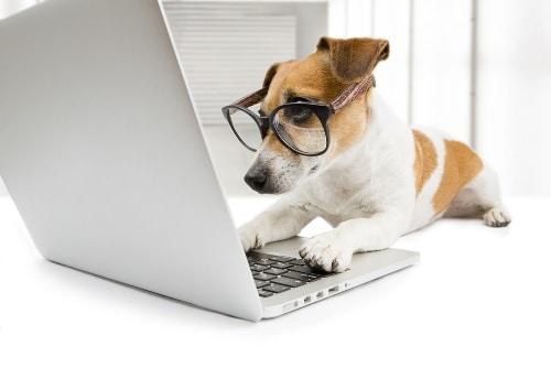blogs-in-spanish